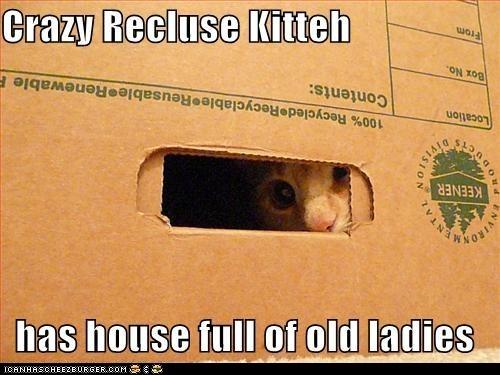 caption Cats classics crazy creepy full house ladies old peeking recluse - 6015638016