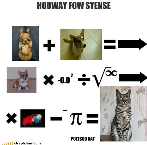 HOOWAY FOW SYENSE -0.0 2 POZESSD KAT
