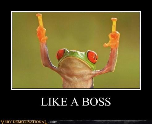 animals finger frog hilarious wtf - 6016127744
