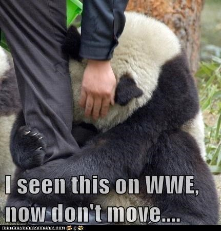 leg panda play throw wrestle wwe wwf - 6016659456