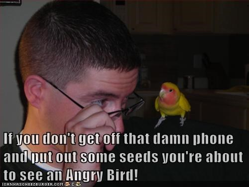 If you don't get off that damn phone and put out some seeds you're about to see an Angry Bird!