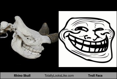 funny meme rhino skull TLL troll face - 6016701440