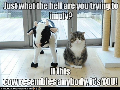 Just what the hell are you trying to imply? If this cow resembles anybody, it's YOU!