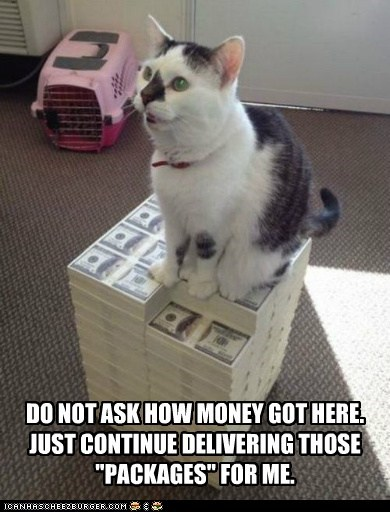 "DO NOT ASK HOW MONEY GOT HERE. JUST CONTINUE DELIVERING THOSE ""PACKAGES"" FOR ME."
