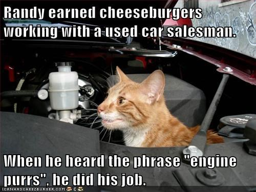 Cheezburger Image 6017780736
