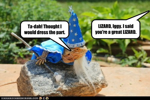 costume,dress up,lizard,outfit,wizard