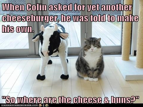 Cheezburger Image 6018169856