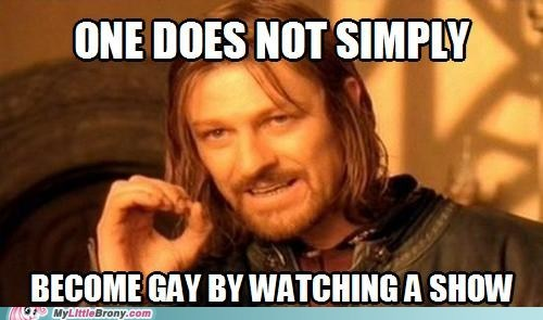 best thing ever,Bronies,gay,meme,one does not simply meme