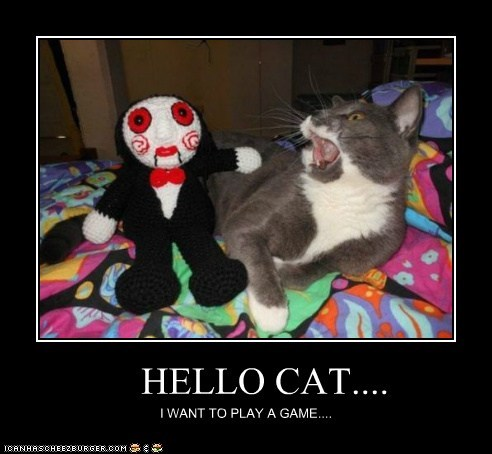 HELLO CAT.... I WANT TO PLAY A GAME....