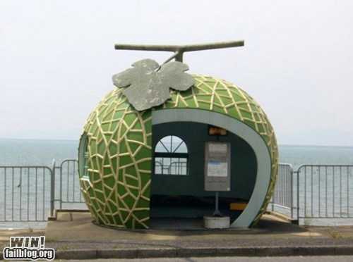 architecture,bus stop,design,melon