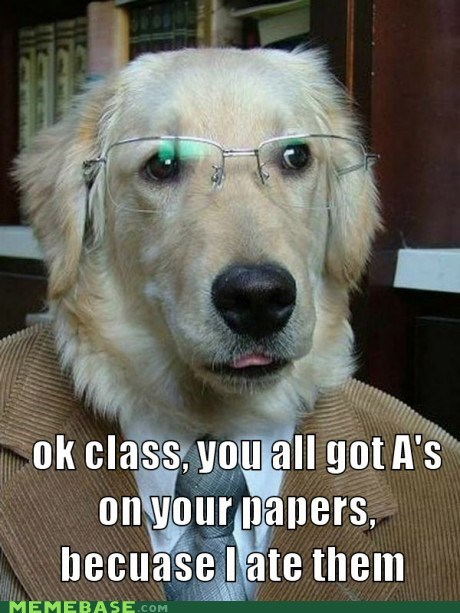dogs,excuses,Memes,papers,teacher