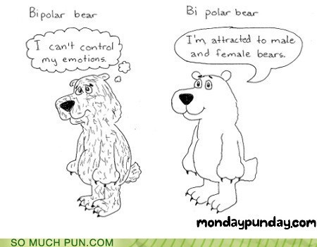 bear bi bipolar double meaning Hall of Fame literalism orientation polar polar bear