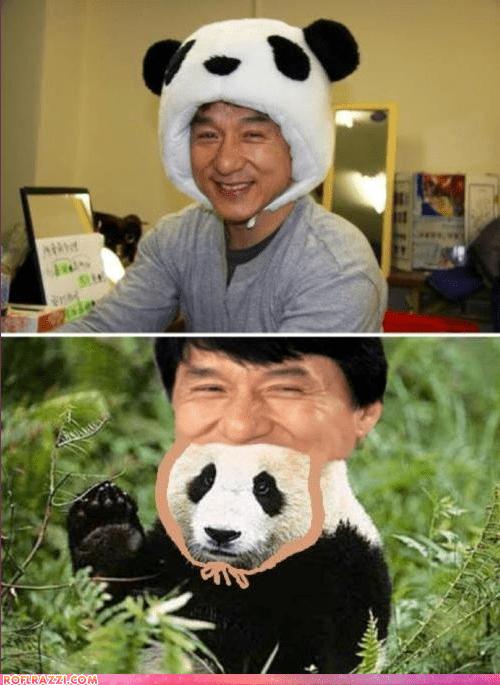 actor celeb funny Jackie Chan shoop wtf - 6019058688