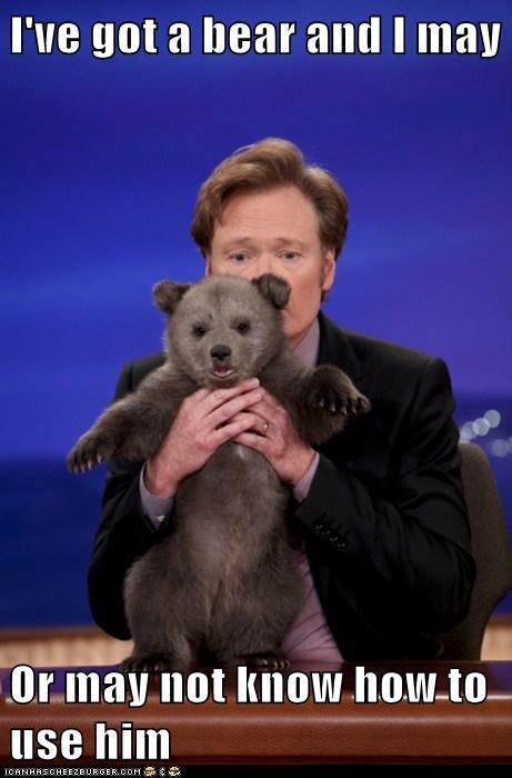 bear conan danger Other Animals TV