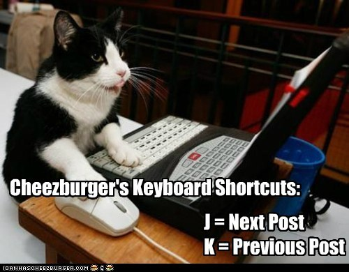 Cats j and k site news tips - 6019225856