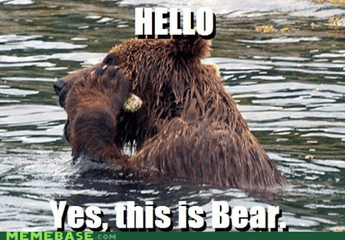 bear hello Memes river salmon this is dog - 6019421696