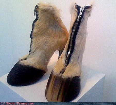 animals,fashion,g rated,hoof,poorly dressed,shoes