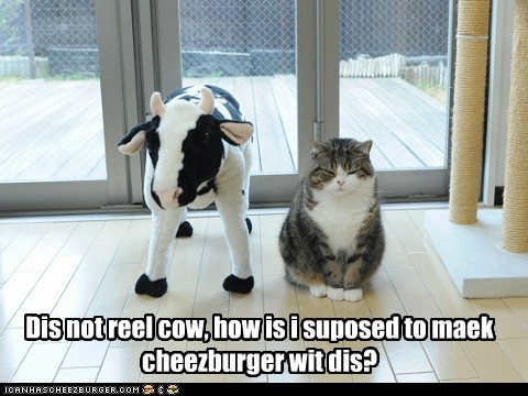 Dis not reel cow, how is i suposed to maek cheezburger wit dis?