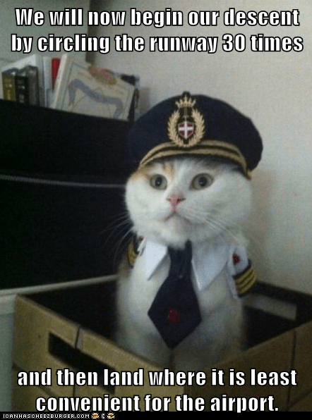 airplanes annoying Captain Kitteh captains Cats Hall of Fame pilots planes - 6020691968
