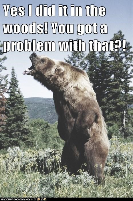 angry annoyed bears expression problem st-in-the-woods - 6020742912