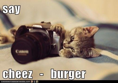 Cheezburger Image 6021183744
