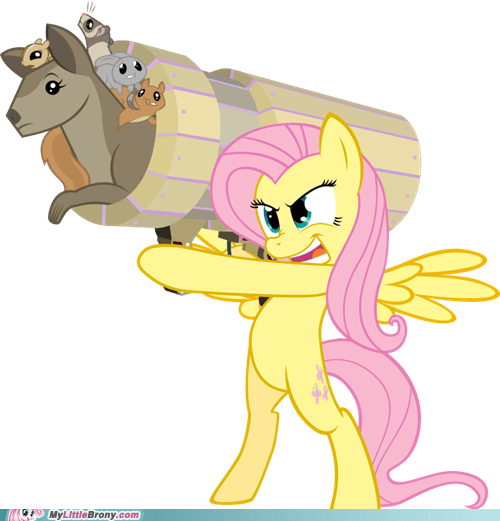 animals fluttershy meme somebody stop me - 6021542400