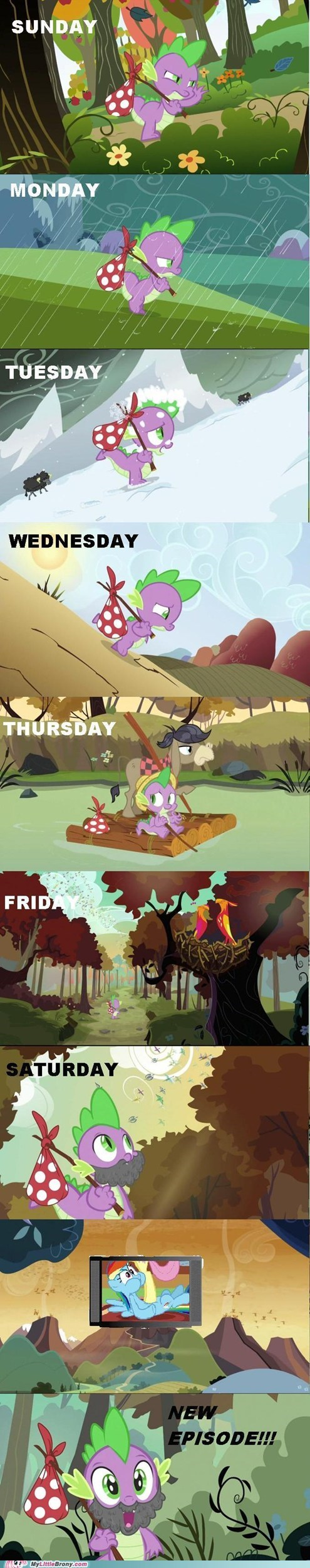a journey,all week,comic,comics,new episode,spike,waiting