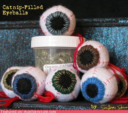 ball,cat toy,catnip,eyeball,gruesome,pets,toy