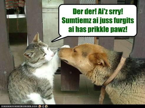 boop cat dogs - 6022866176