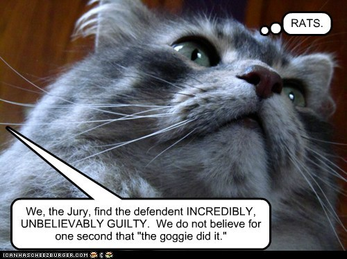 "We, the Jury, find the defendent INCREDIBLY, UNBELIEVABLY GUILTY. We do not believe for one second that ""the goggie did it."" RATS."