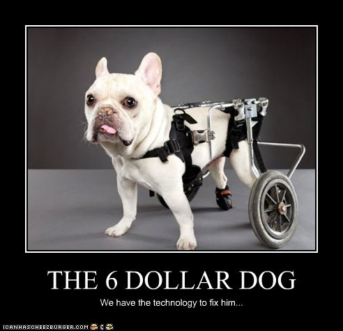 THE 6 DOLLAR DOG We have the technology to fix him...