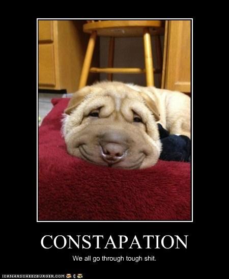 CONSTAPATION We all go through tough shit.