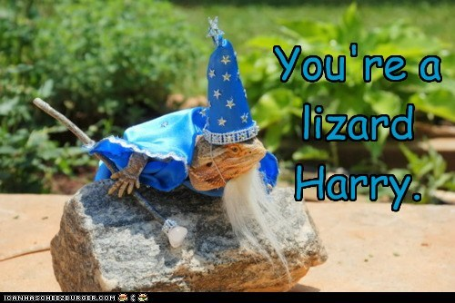 best of the week caption costume Hagrid Hall of Fame Harry Potter iguana lizard lizards outfit wizard - 6025386752