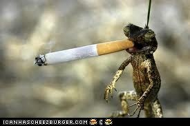 Don't smoke or you'll look like me!