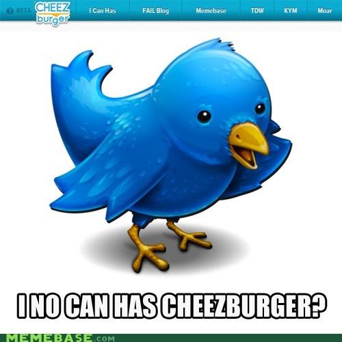 Cheezburger Image 6026554624