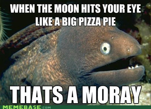 Bad Joke Eel jokes meme madness moray pizza - 6026722304