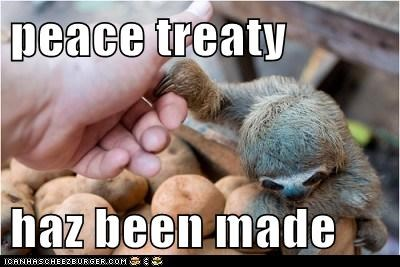 claw,eyes,feed me,peace,shake hands,sloth,treaty