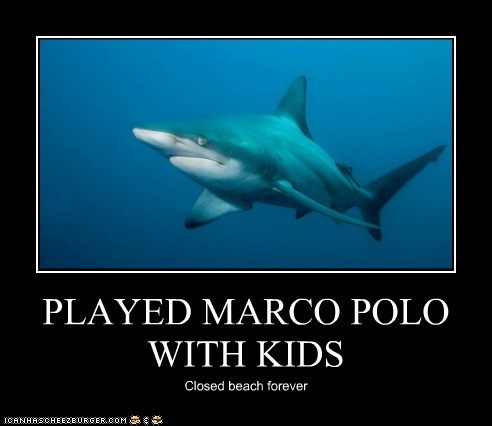 alone beach closed forever games Marco Polo meme Misunderstood Shark Sad shark