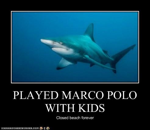 alone beach closed forever games Marco Polo meme Misunderstood Shark Sad shark - 6027714304