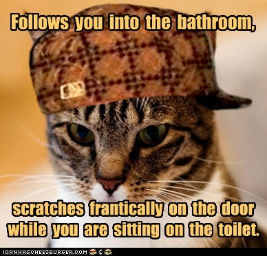 Follows you into the bathroom, scratches frantically on the door while you are sitting on the toilet.