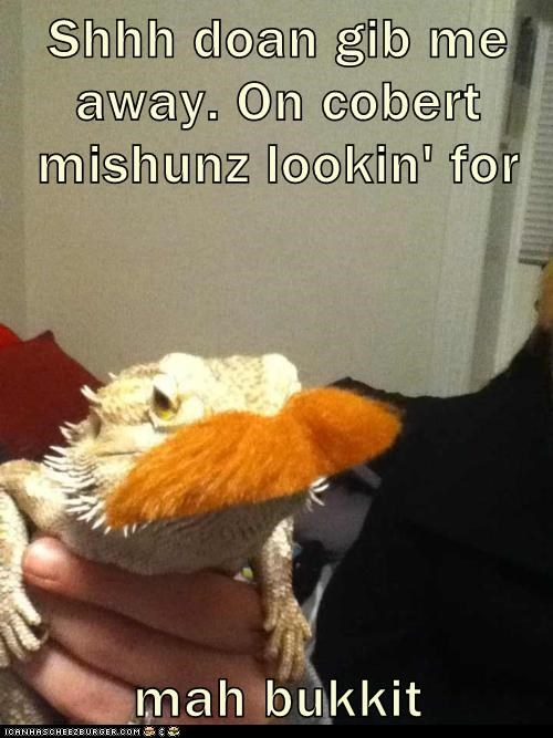 bukkit costume disguise hide lizard lolrus mustache - 6029045760
