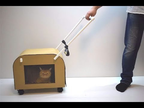 diy video cat owner DIY Cats Video - 6029317