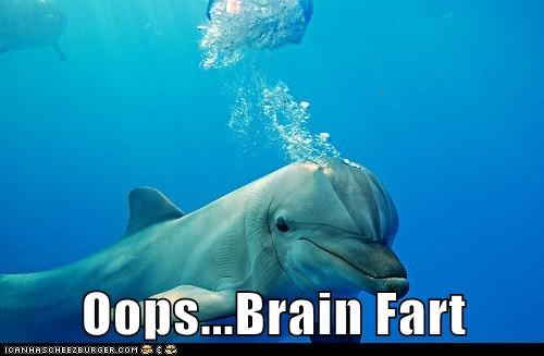 air best of the week brain fart bubbles caption dolphin dolphins dumb Hall of Fame ocean stupid water