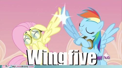 brohoof fluttershy ponies rainbow dash wing power wingfive - 6029979904