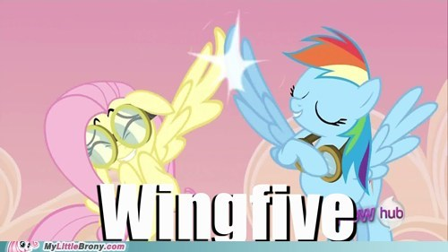 brohoof fluttershy ponies rainbow dash wing power wingfive - 6029979904