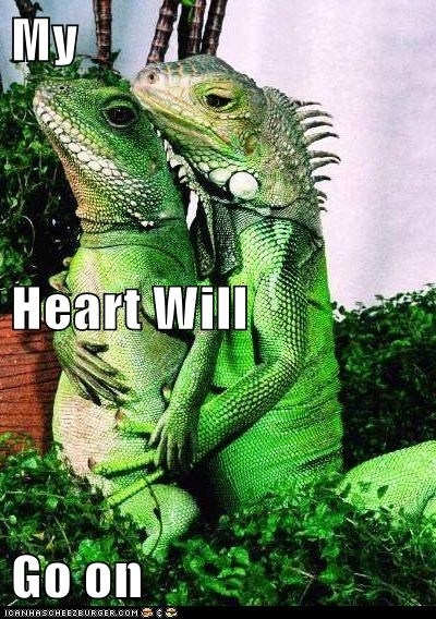 caption iguana iguanas lizard lizards love Movie movies reference reptile titanic - 6031316224