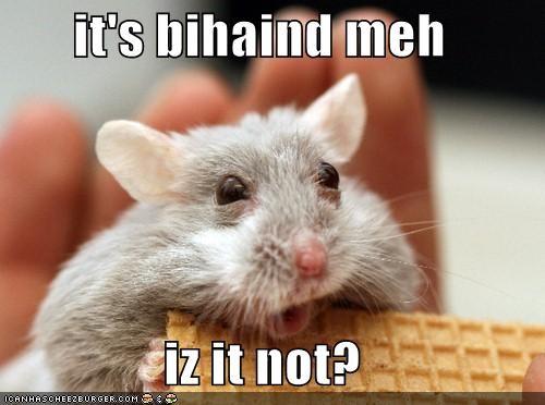 it's bihaind meh  iz it not?