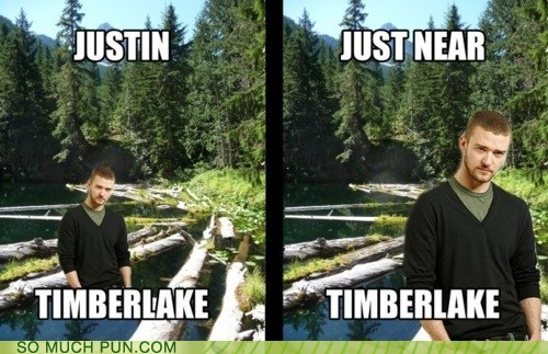 double meaning,Hall of Fame,homophone,in,Justin Timberlake,lake,literalism,location,near,surname,timber