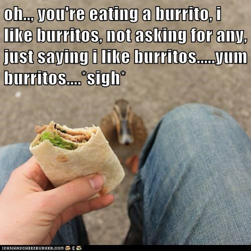 oh.., you're eating a burrito, i like burritos, not asking for any, just saying i like burritos.....yum burritos....*sigh*