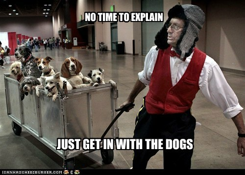 cart,dogs,no time to explain